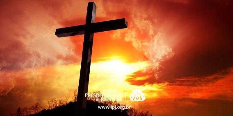 www.ipj.org.br (8)